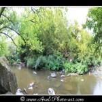 Visite virtuelle du site Corot à St Junien