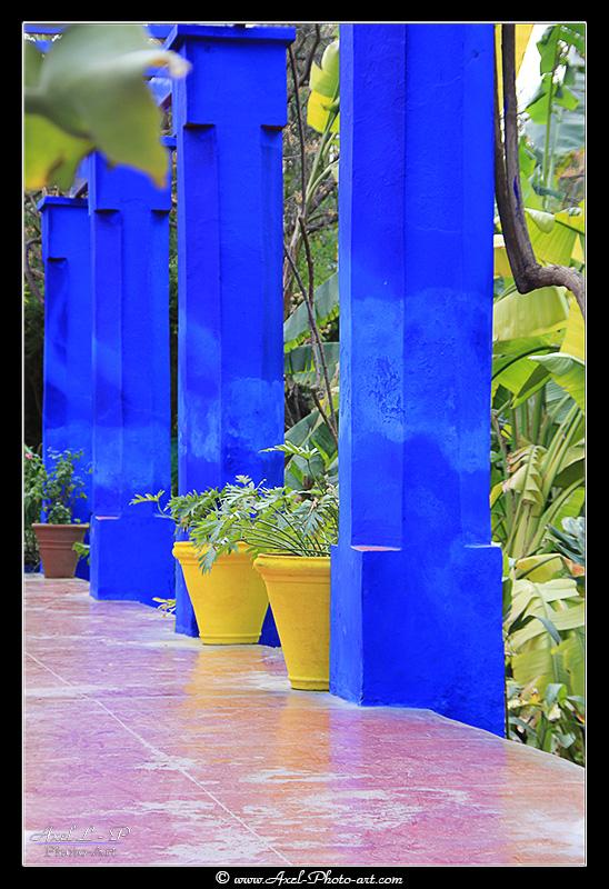 Jardin Majorelle – Marrakech – Maroc