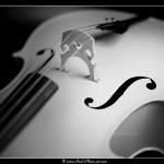 Violoncelle - Tirage 45x30 - Cadre 60x40