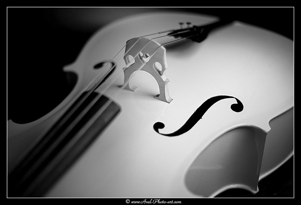 Violoncelle blanc