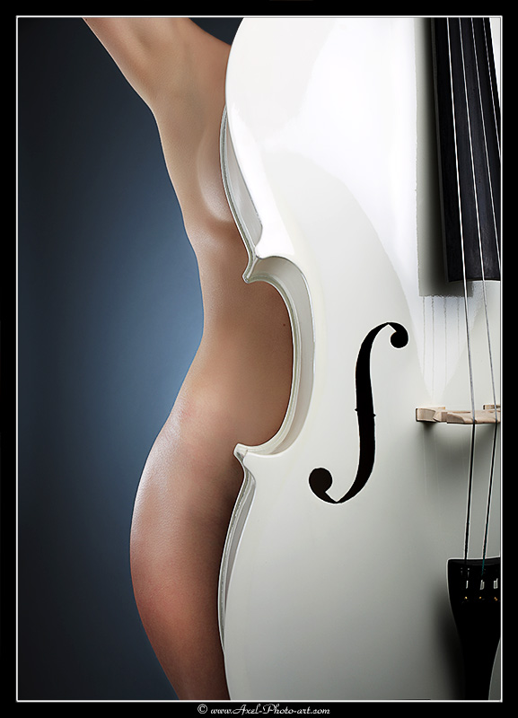 Courbes Musicales