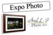 Exposition à St Pardoux du 02 au 13 juin - Thème Macrophoto/Animalier