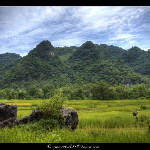 Paysages de la vallée des Thai Blancs - Vietnam