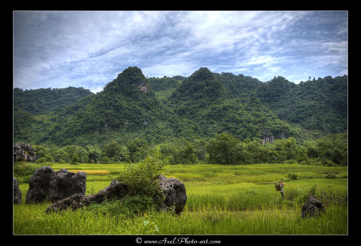 Paysages de la vallée des Thai Blancs – Vietnam