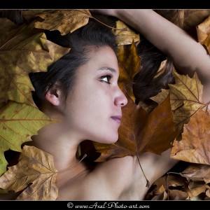 Couleurs d'automne - Lily