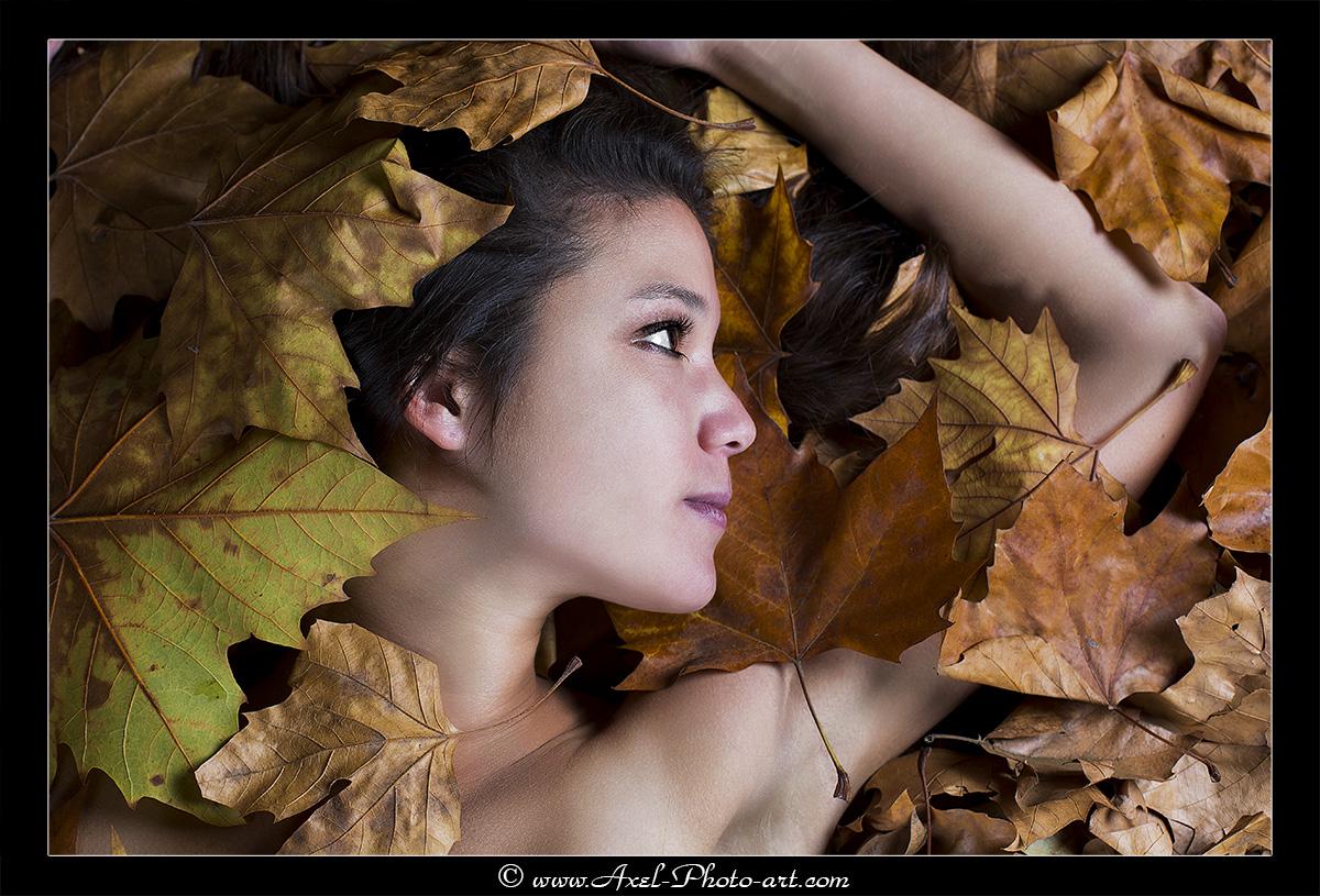Couleurs d'automne – Lily