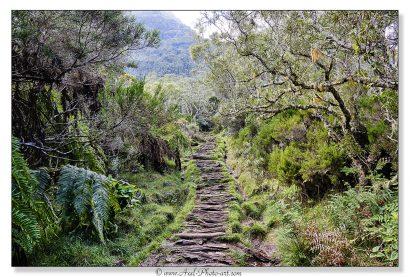 chemin de Mafate