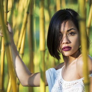 Maylie - Bambous