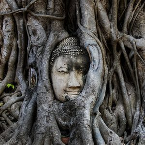 Wat Phra Mahathat - Thailande