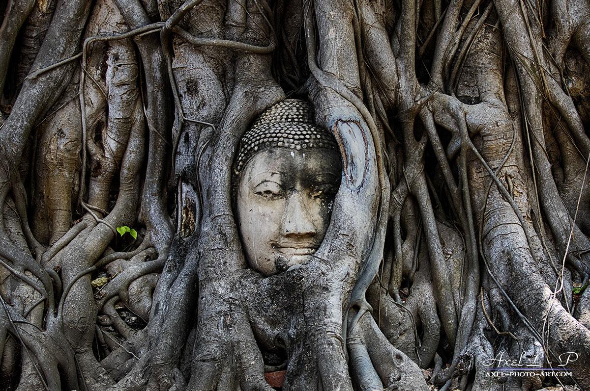 Wat Phra Mahathat – Thailande
