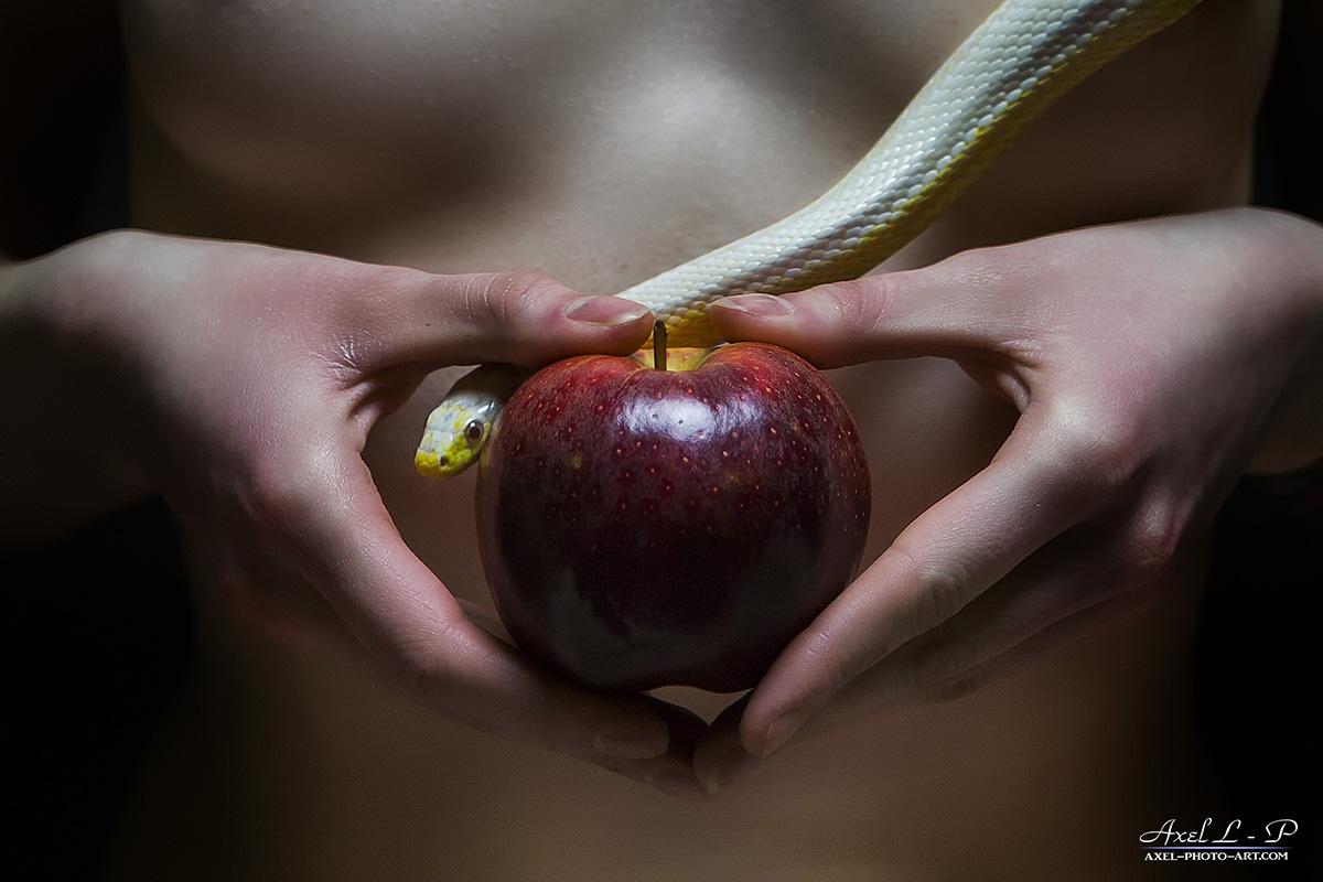 Eve, la pomme et…